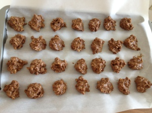 Peanut Butter Shakeology No Bake Freezer Cookies