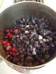 Cranberry and Blueberry Sauce
