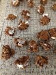 GF Coffee Marshmallow Cookies