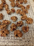 GF Oatmeal Mixed Berry Cookies