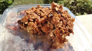 Vegan & GF Apple Pie Granolay Bars