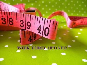 Week 3 Updates
