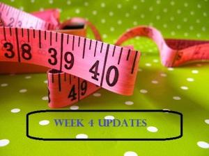 Week 4 Update