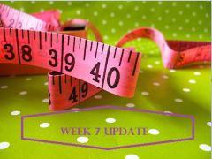 Week 7 Update