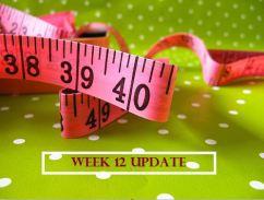 Week 12 Update