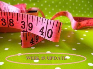 Week 19 Update