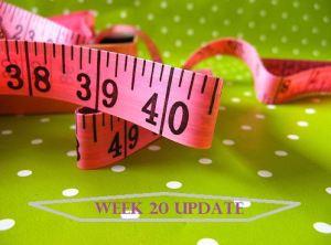 Week 20 Update