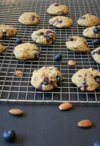 Vegan and GF Almond Blueberry Cookies