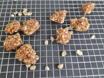 Vegan, Gluten- & Sugar-Free No Bake PB Oatmeal Cookies