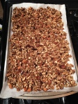 Vegan and Gluten-free Sugar-free Trail Mix Granola - Elimination Diet
