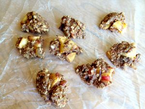 Vegan and Gluten-Free Summer Breakfast Cookies - Perfect for Fall when you are missing those summer nectarines!