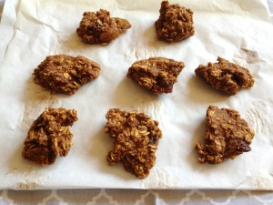 Vegan, Gluten-Free and Sugar-Free Maple Sweetened Pumpkin Oatmeal CookiesVegan, Gluten-Free and Sugar-Free Maple Sweetened Pumpkin Oatmeal Cookies