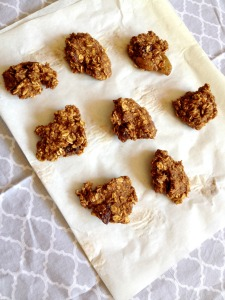 Vegan, Gluten-Free and Sugar-Free Maple Sweetened Pumpkin Oatmeal Cookies