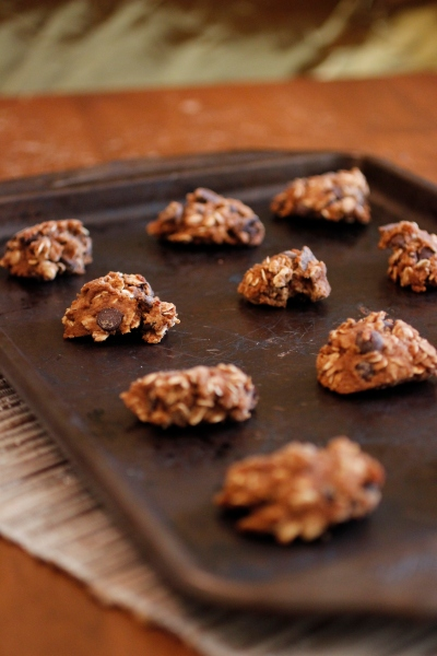 Decedent Vegan and Gluten-Free Dark Chocolate PB Oatmeal Cookies