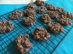 Best Pumpkin Cookies Ever! Vegan and Gluten-Free Soft and Delicious Pumpkin Chocolate Chip Oatmeal Cookies